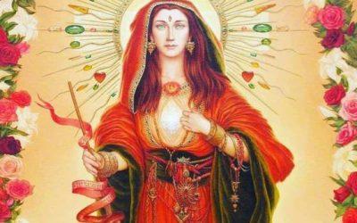 Scopri quale rosa sboccia dentro di te, collegata al tuo femminile sacro